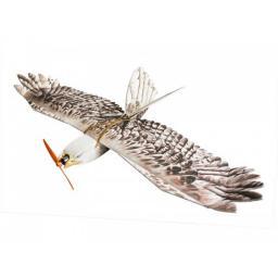 arkai Adler KIT 1200 mm Spannweite